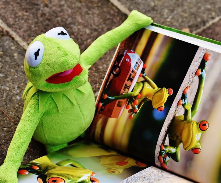 Bilderbücher ohne Worte, Bilderbuch ohne Worte, textloses Bilderbuch, Bilderbuch ohne Text, Bilderbücher ohne Text,bilderbuch